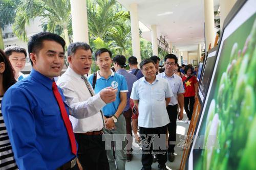 """Biển đảo Việt Nam: Đà Nẵng tổ chức triển lãm ảnh """"Tuổi trẻ vì biển đảo quê hương"""""""
