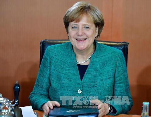 Thủ tướng Đức khởi động đàm phán thành lập Chính phủ liên minh
