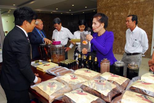 """Hội nghị """"Kiều bào góp ý với phát triển nông nghiệp ứng dụng công nghệ cao tại Thành phố Hồ Chí Minh"""""""