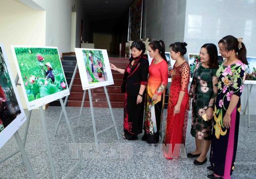 """Triển lãm """"Ảnh đẹp du lịch tỉnh Hưng Yên năm 2017"""""""