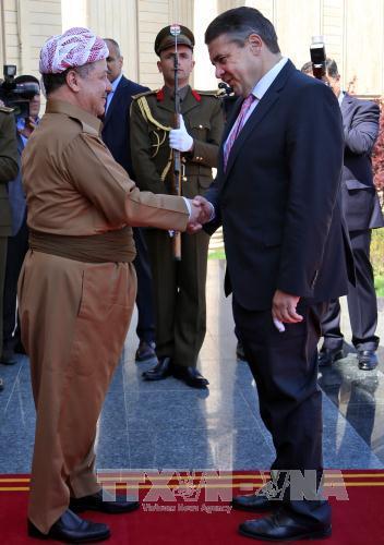 Đức đình chỉ sứ mệnh huấn luyện các tay súng người Kurd ở Iraq